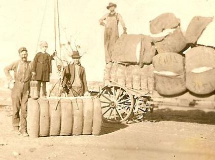cotton-bales-heading-to-market